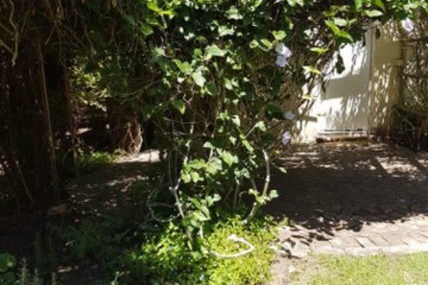 bay-tree-cottage 20170201_122610_001